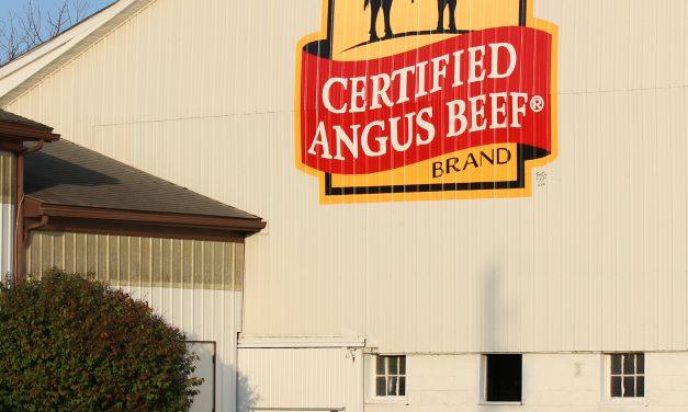 Brand the Barn: McKean Bros. Angus