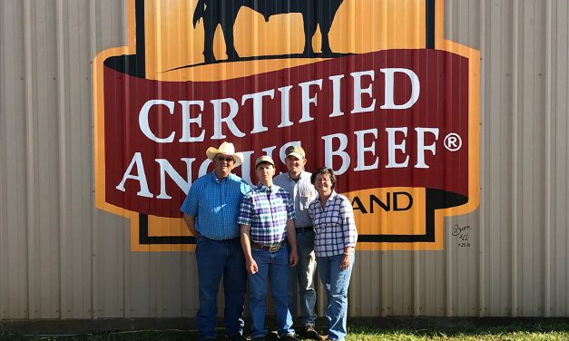 Brand the Barn: Pfeiffer Angus Farms