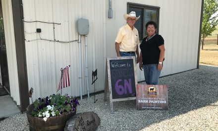 Brand the Barn: Sankey's 6N Ranch