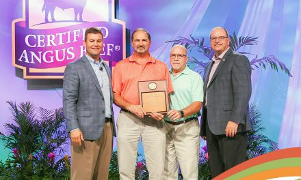 Giant Eagle recognized for sales