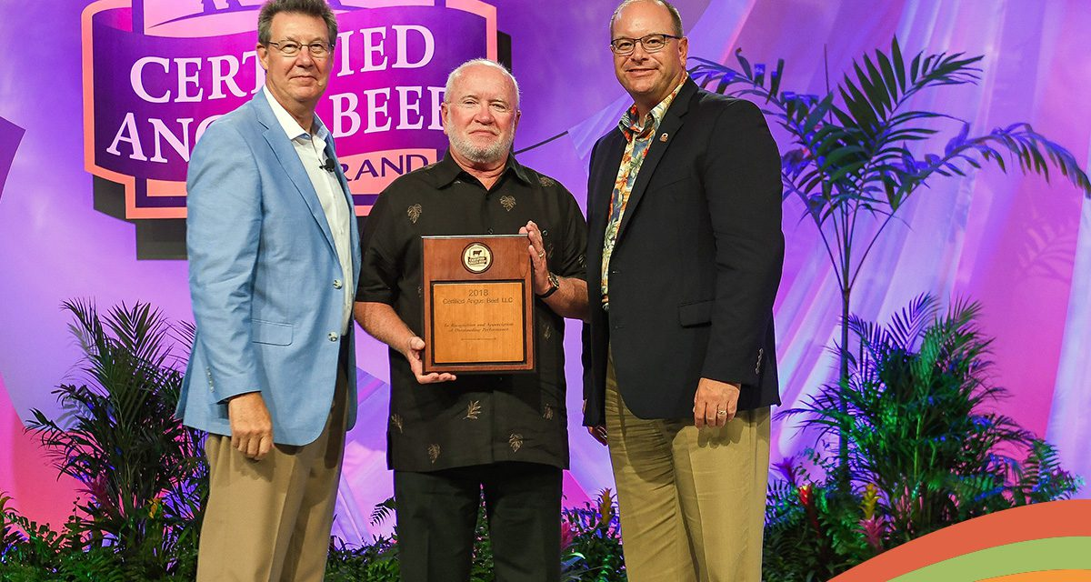 Palmer Food Services recognized for sales