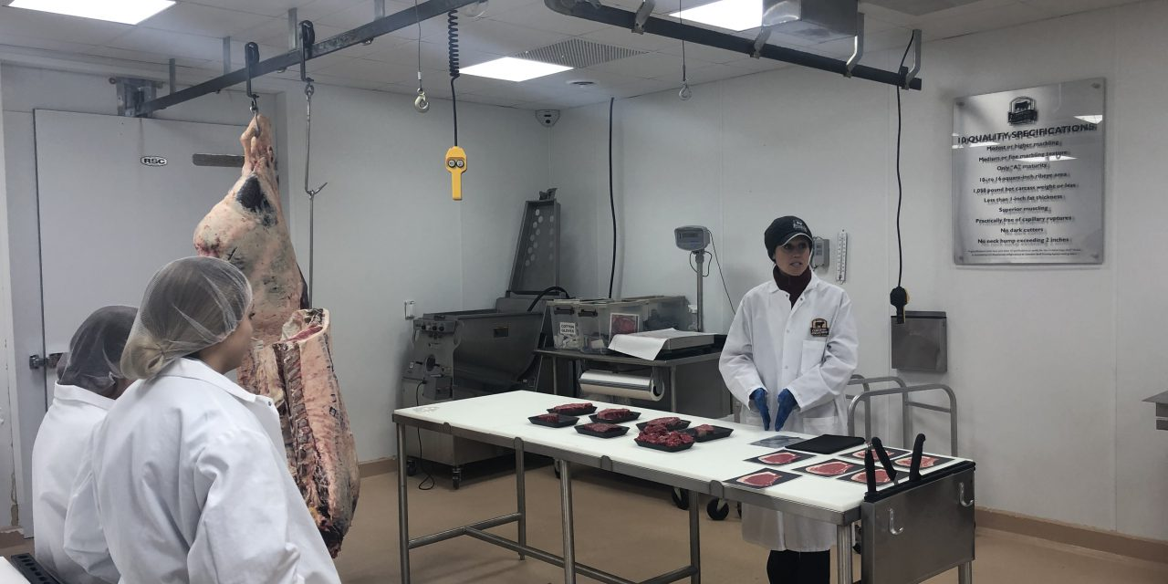 High School Students Learn about Beef Quality