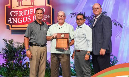 Schweid & Sons recognized for ground beef sales